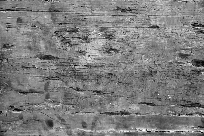 2-Lucca-Textures-Lindsay-Adler-Photography-BW.jpg