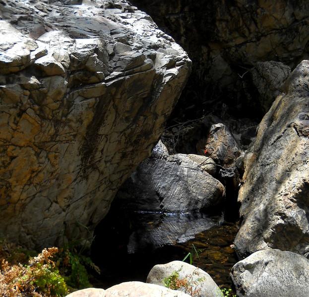Rock pool3.jpg