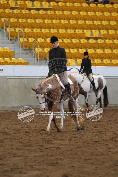 384 and 5 Year Old Hunter Under Saddle