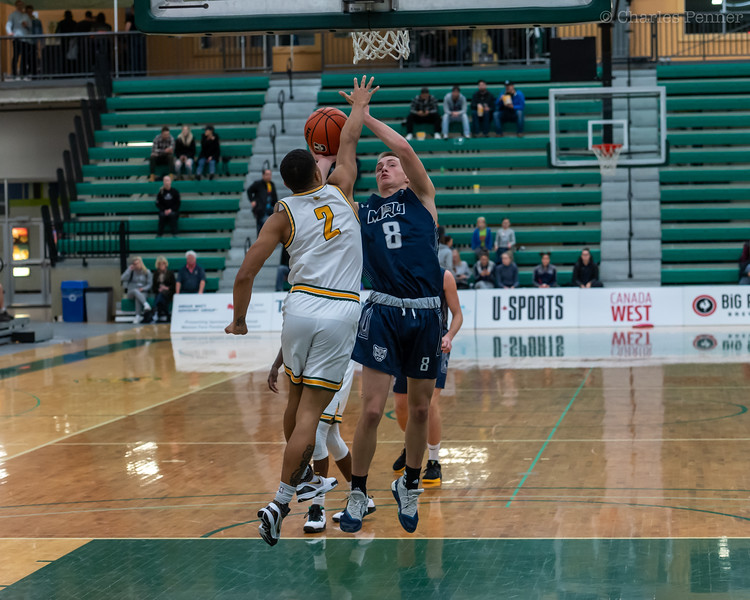 Basketball UofA Bears vs MRU Cougars