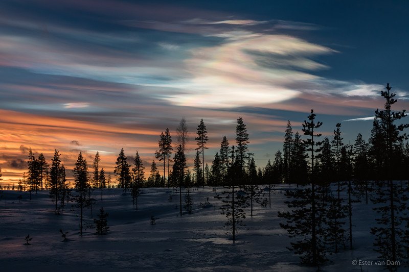 Polar Stratospheric Clouds II