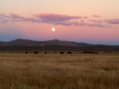 South Creek Ranch