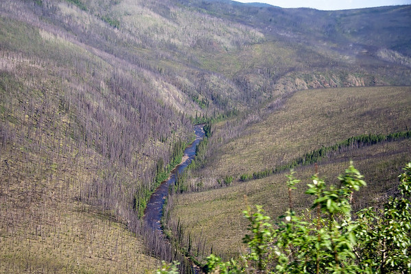 Alaska and the Yukon Territory Border - June 2009