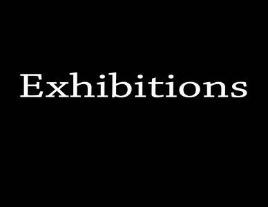 """10-11-2015  T2 Arena """"CASA' Barrel Racing Exhibitions"""