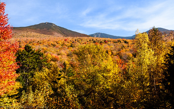 White Mountain National Forest (NH) Collection