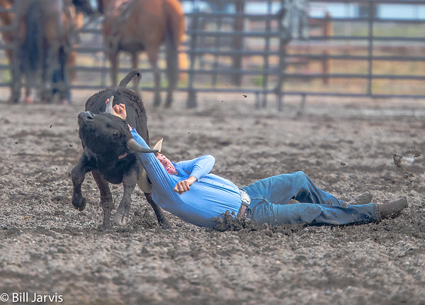 Rodeo Wrecks