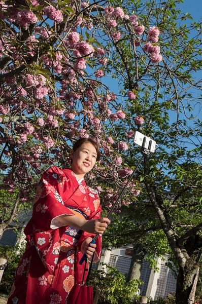 Japanese woman in traditional kimono