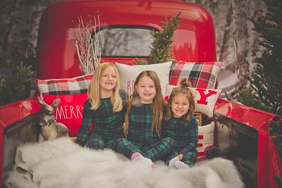 Shayna Reader Christmas Mini