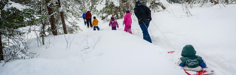 snowshoeing-hiking 04  880X282.jpg