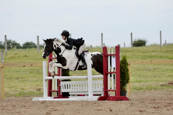 City View Equestrian Shows