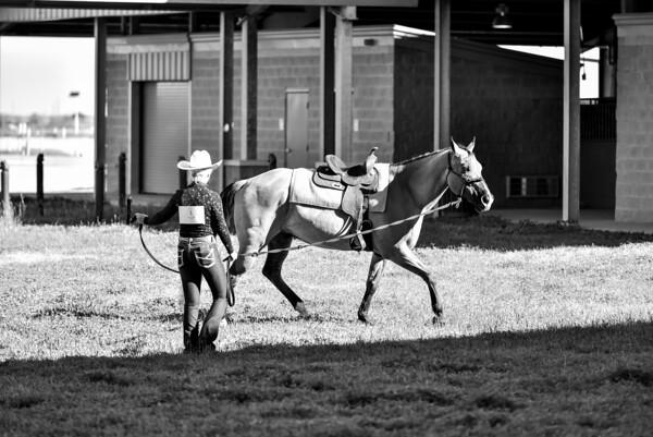 Ringshots - Horsemanship