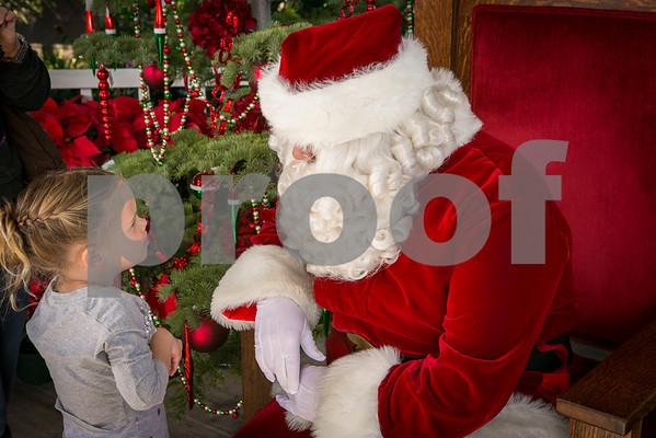 Sat.Dec. 15,  2012 Rogers Gardens