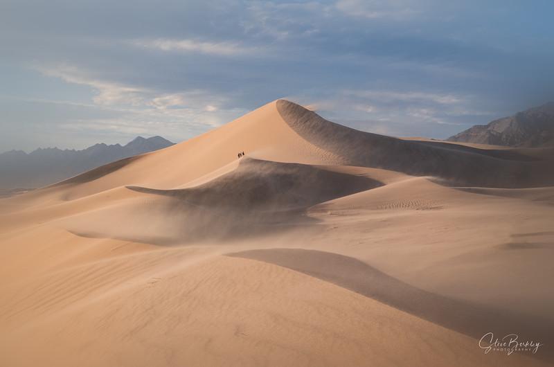 Sandstorm at Ibex VII