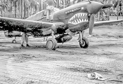 Curtis P-40 Warhawks