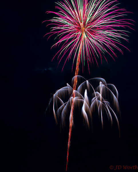 070417 Luray VA Downtown Fireworks - Pink Green White Flower Like on Stem with Branches-0864.jpg