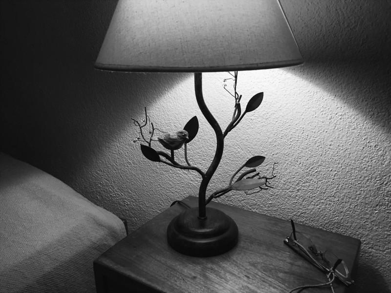 Birdy Lamp