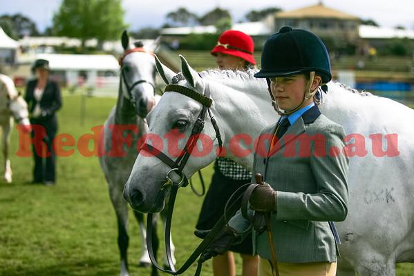 2014 09 29 Perth Royal Show APSB Australian