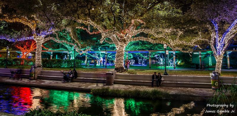 Houston-Zoo-Lights-2977.jpg