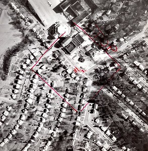 1981 Aerial Survey