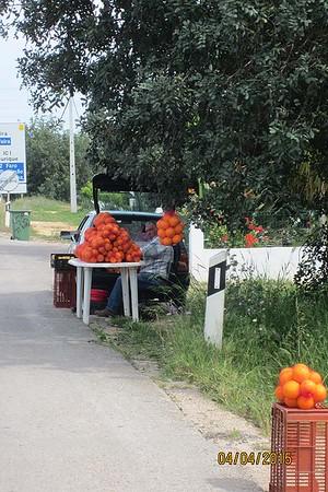Roadside orange vendors, Albufeira, Algarve [Vivienne]
