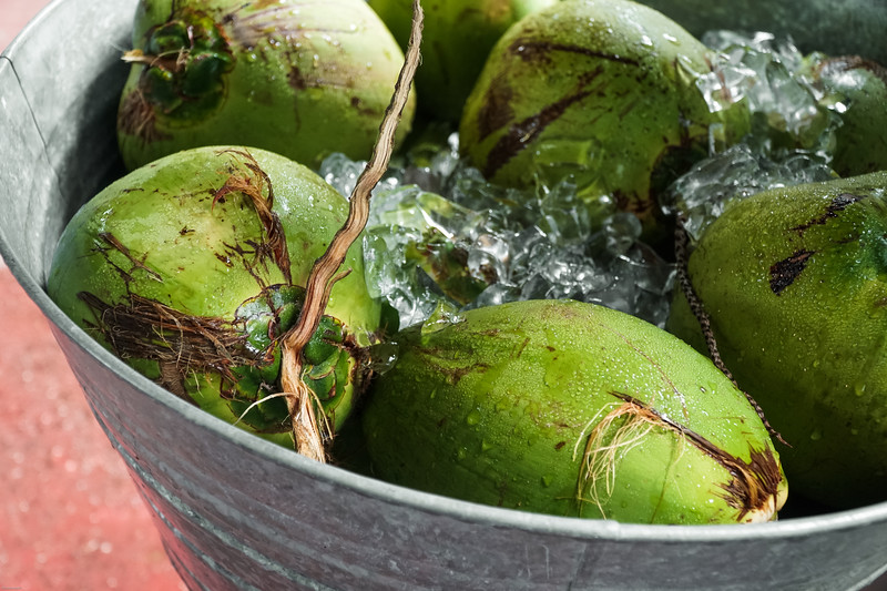 Coconuts on ice