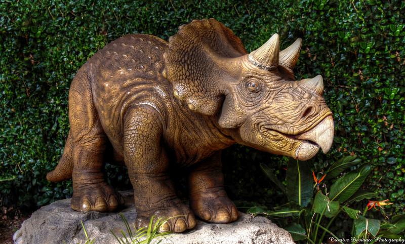February 20, 2010  Discovery Science Museum Santa Ana, CA  Triceratop  Tri = Three Kera = Horn Top = Face