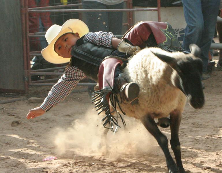 Rodeo  1159.jpg