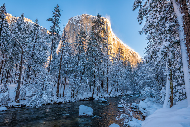 Winter Captain: Yosemite National Park Fine Art Landscape Nature Photography