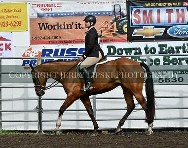 2016  Western Horse Show