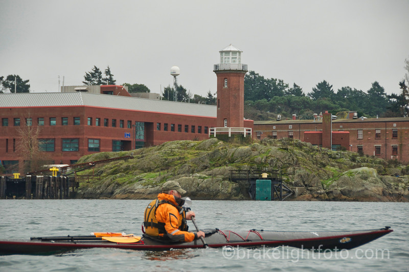 Kayaking Esquimalt Harbour