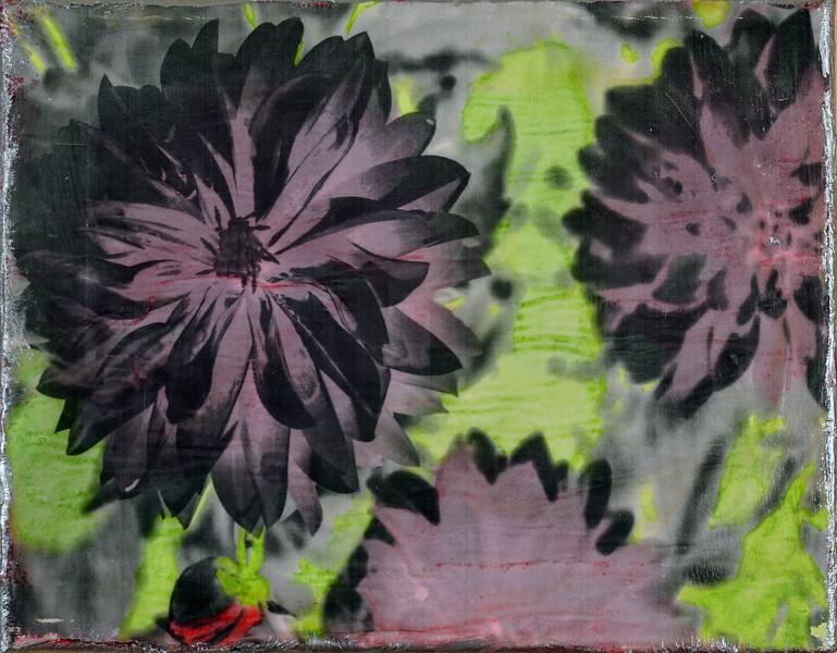 Red flower series 1