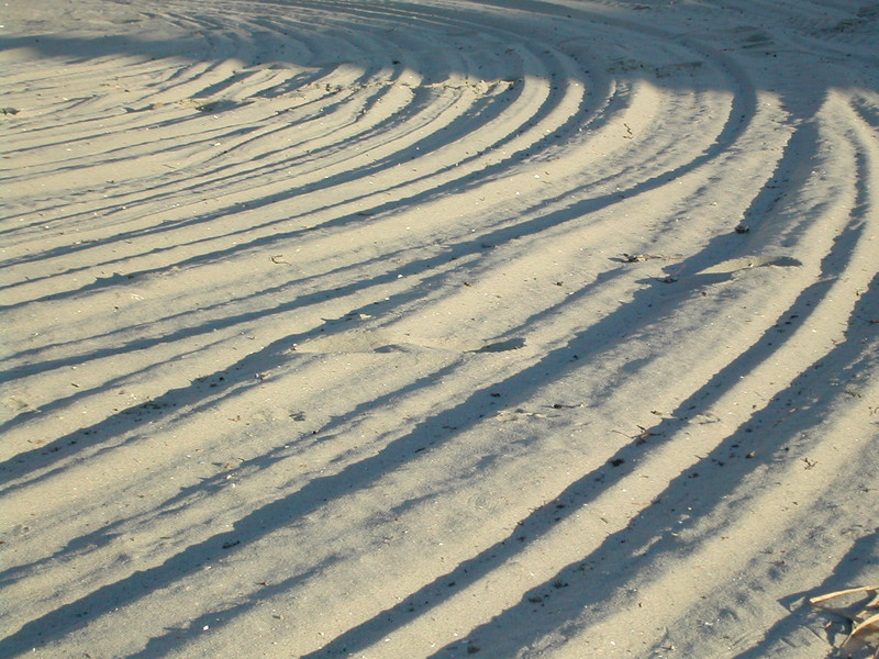 lines in the sand.jpg