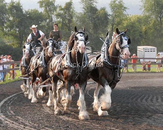 Grange Fair 2007  --  Draft Horses - Six Horse Hitch