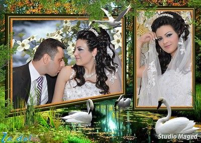 ramy_dawod_wedding