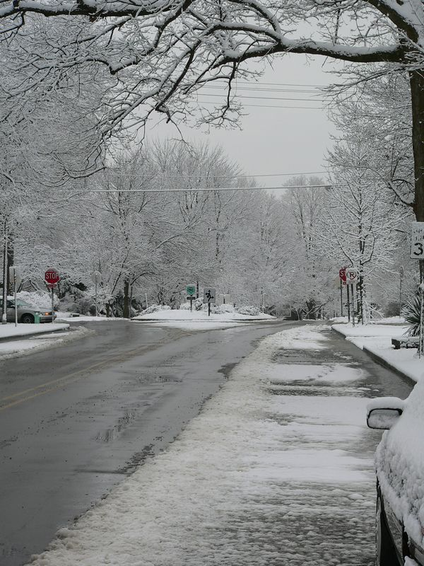January 8 006.jpg