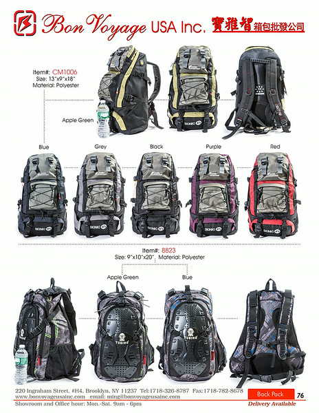BackPack p76-X2.jpg
