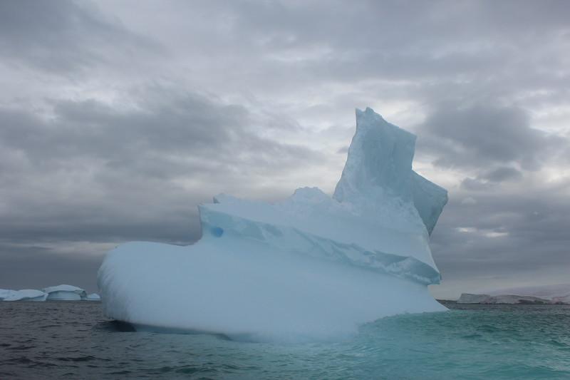 Antarctica 219.JPG
