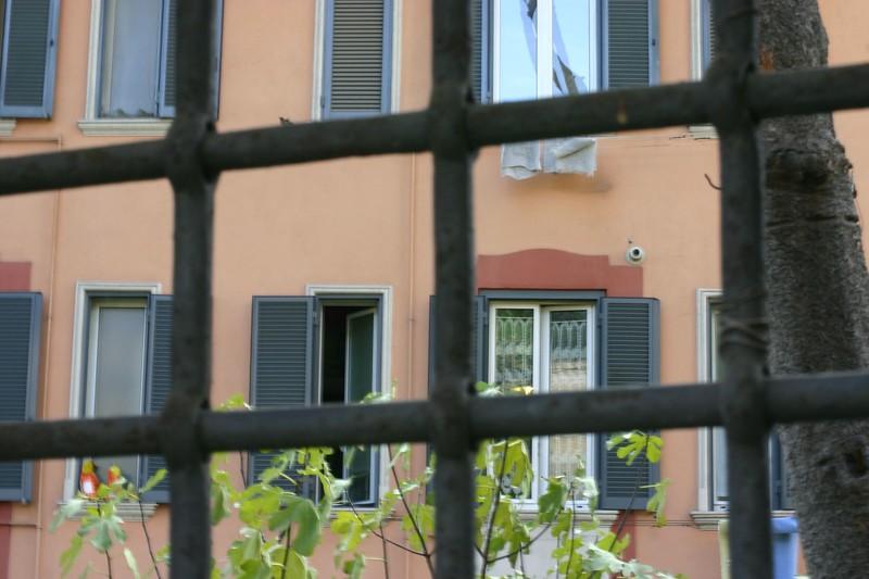 rome-street_2087208331_o.jpg