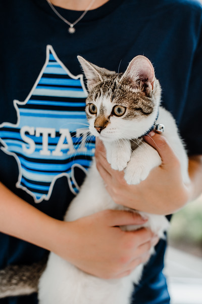 October 26, 2018 cat day DSC_9890.jpg