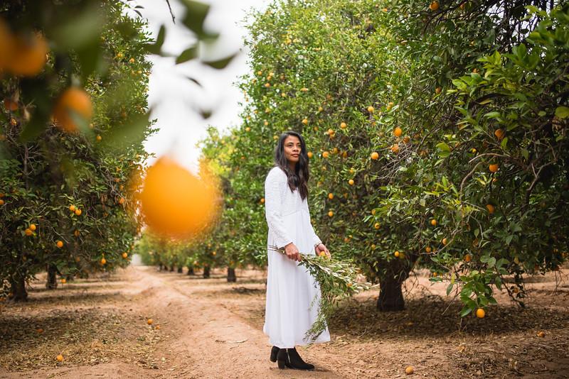 Citrus Styled Shoot (3 of 120).jpg