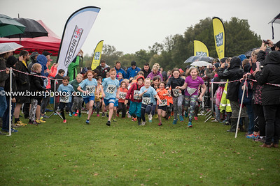 Out Of The Blue Races At Ashburnham Place Battle East Sussex