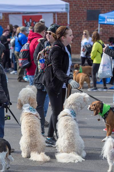 Richmond Spca Dog Jog 2018-622.jpg