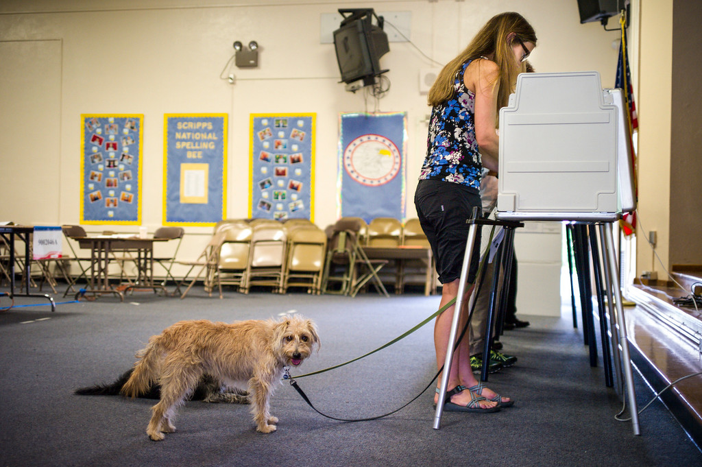 . Anna Donlin of Los Angeles casts her ballot as her dogs Walnut and Pearl wait at the polling place at Allesandro Elementary school in Los Angeles early Tuesday morning.  Los Angeles residents will vote for a new mayor, Eric Garcetti or Wendy Gruel in the citywide election.  Photo by David Crane/Staff Photographer