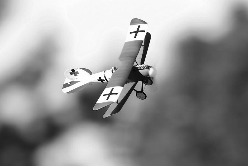FZ_AlbatrosDV_26.jpg
