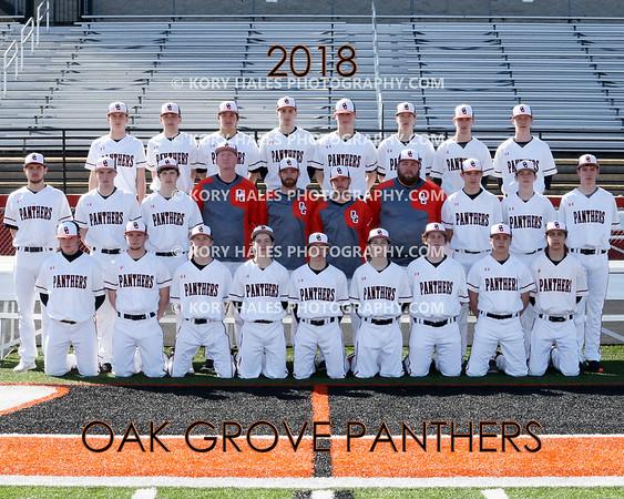2018 OGHS Baseball