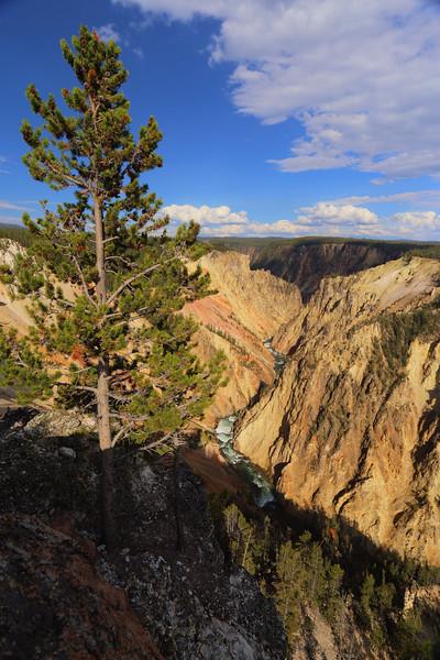 Yellowstone 084.JPG