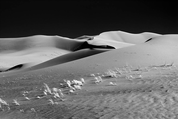 Le Sahara en N&B • The Sahara in B&W