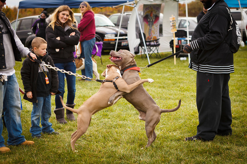 Bark Bash 2012 (435 of 438).JPG