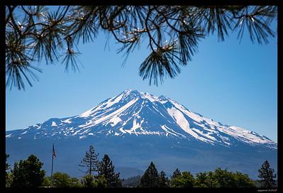 Oregon-Mi-Lan RN 6-17-17