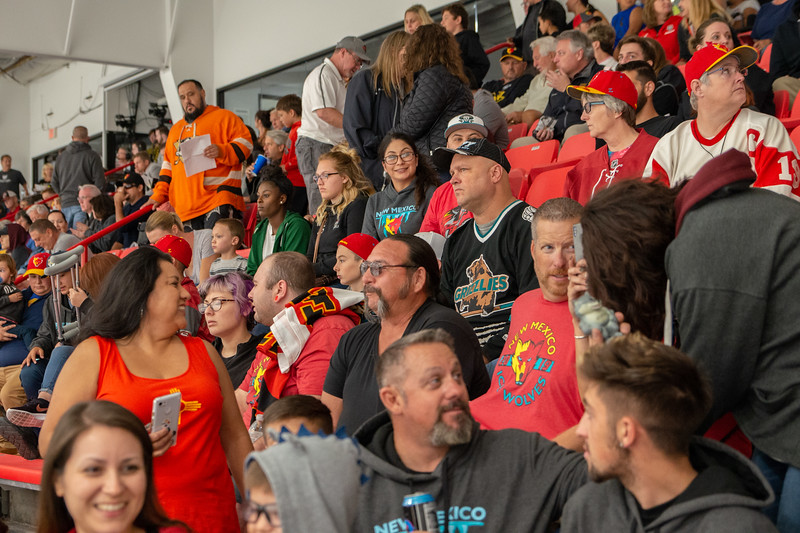 Ice Arena Crowd.jpg